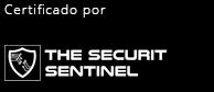 The Segurity Sentinel